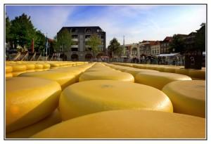 Alkmaar,mercato del formaggio2