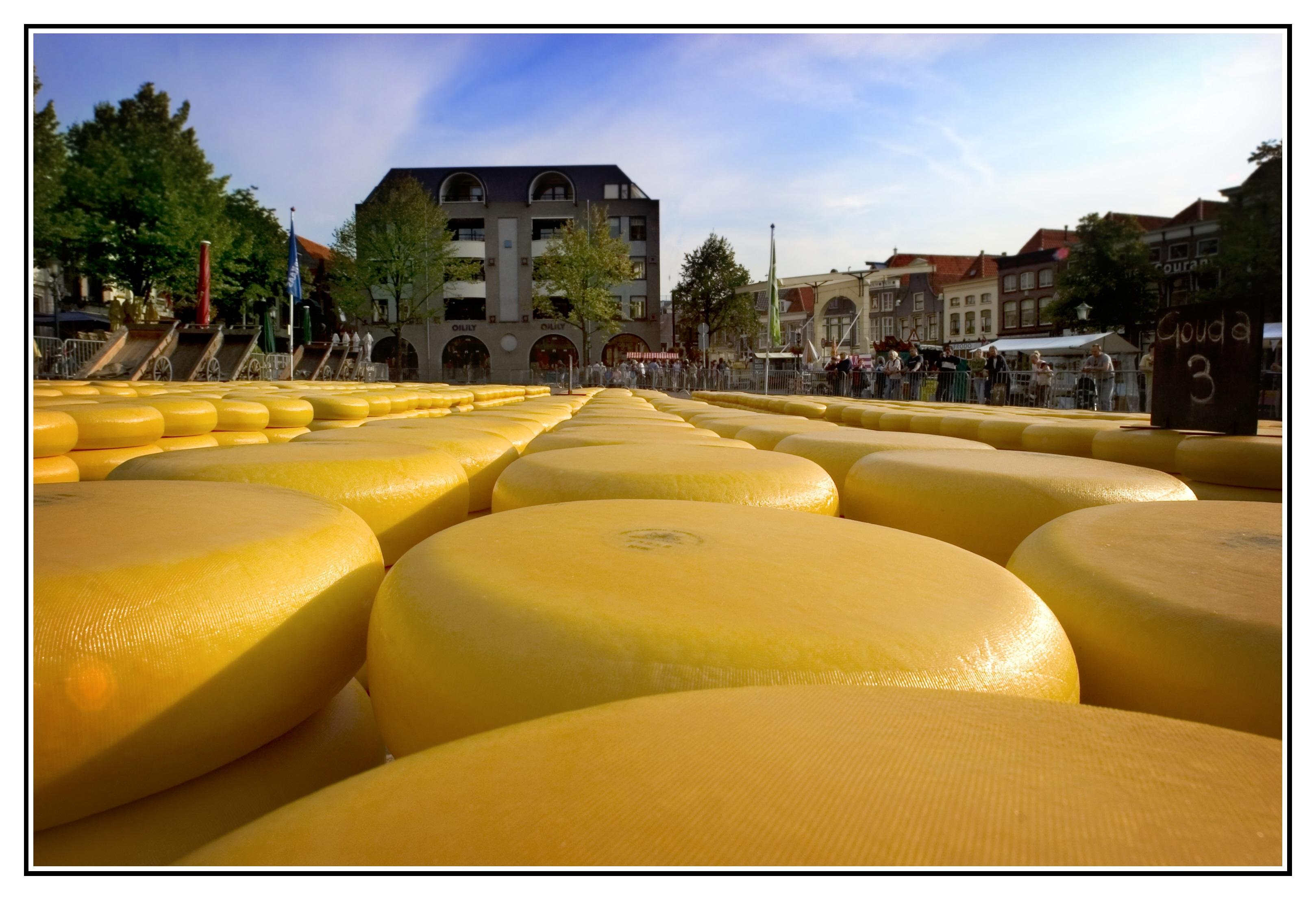 Alkmaarmercato-del-formaggio2