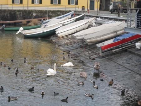 Barche al Molo di Colico